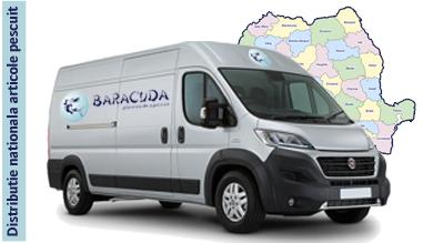 Baracuda - Te insotim in aventura